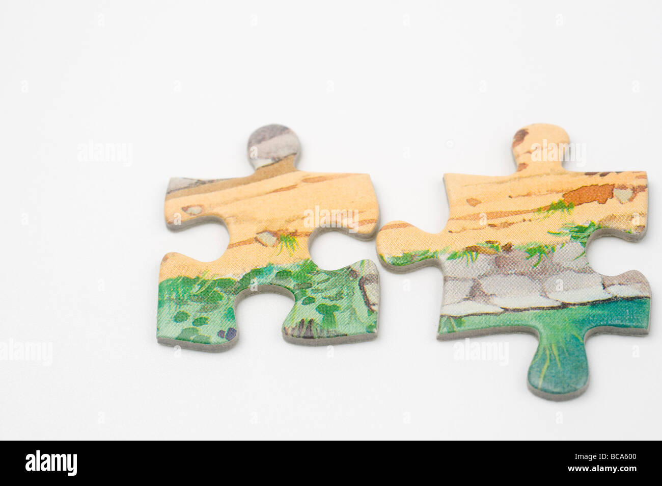 Cutout of Matching Jigsaw Puzzle pieces on white background - Stock Image
