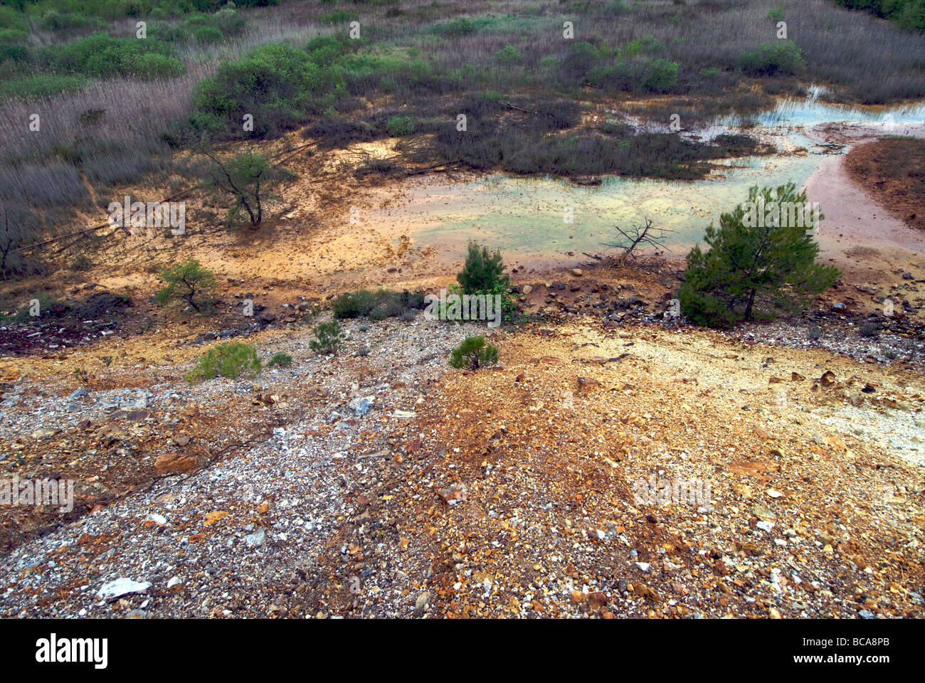 Colline Metallifere, Tuscany.  Area contaminated from mine waste - Stock Image