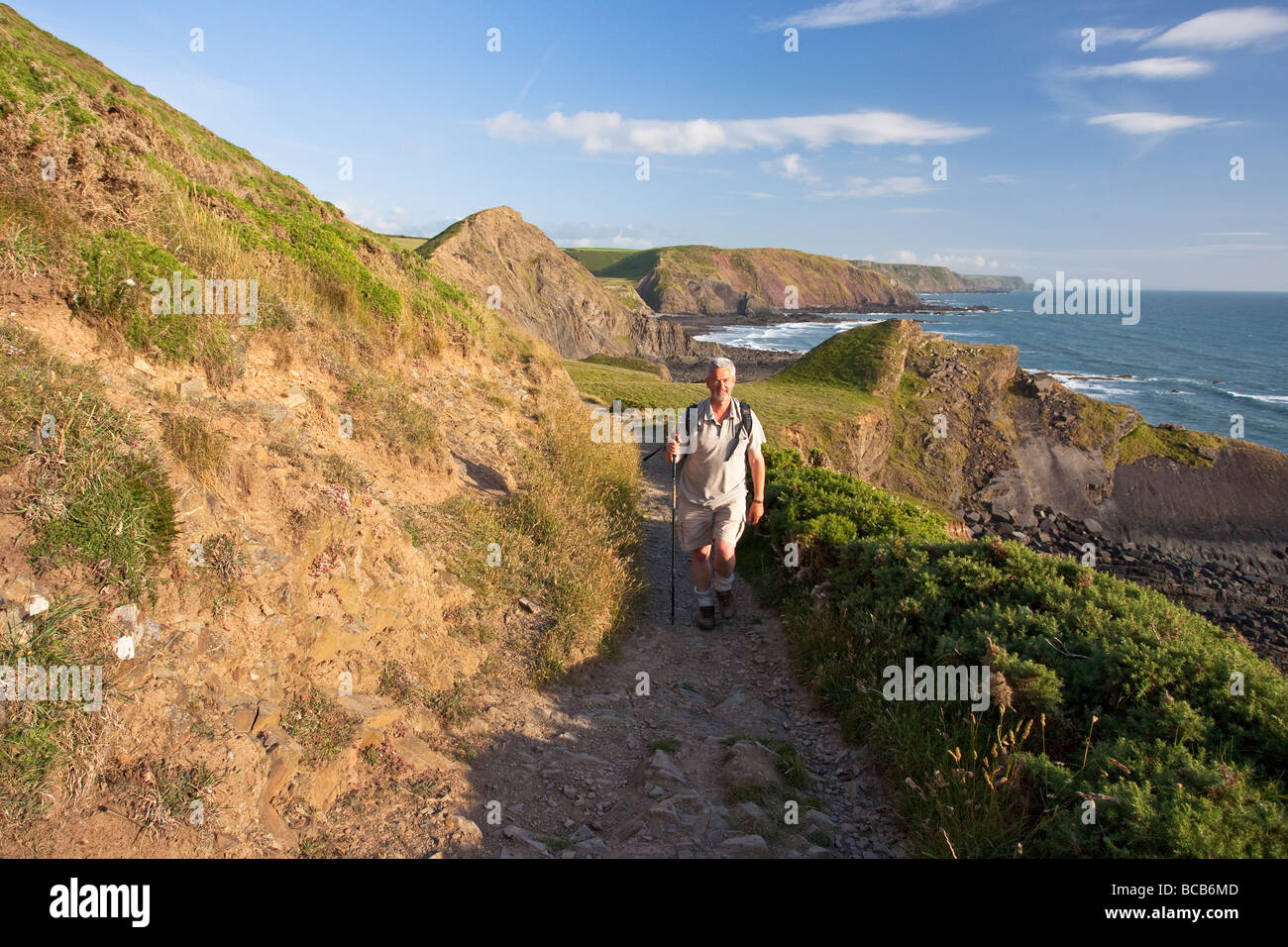 Middle aged man in 50's walking to Hartland Quay along coastal footpath North Devon Heritage Coast England UK - Stock Image