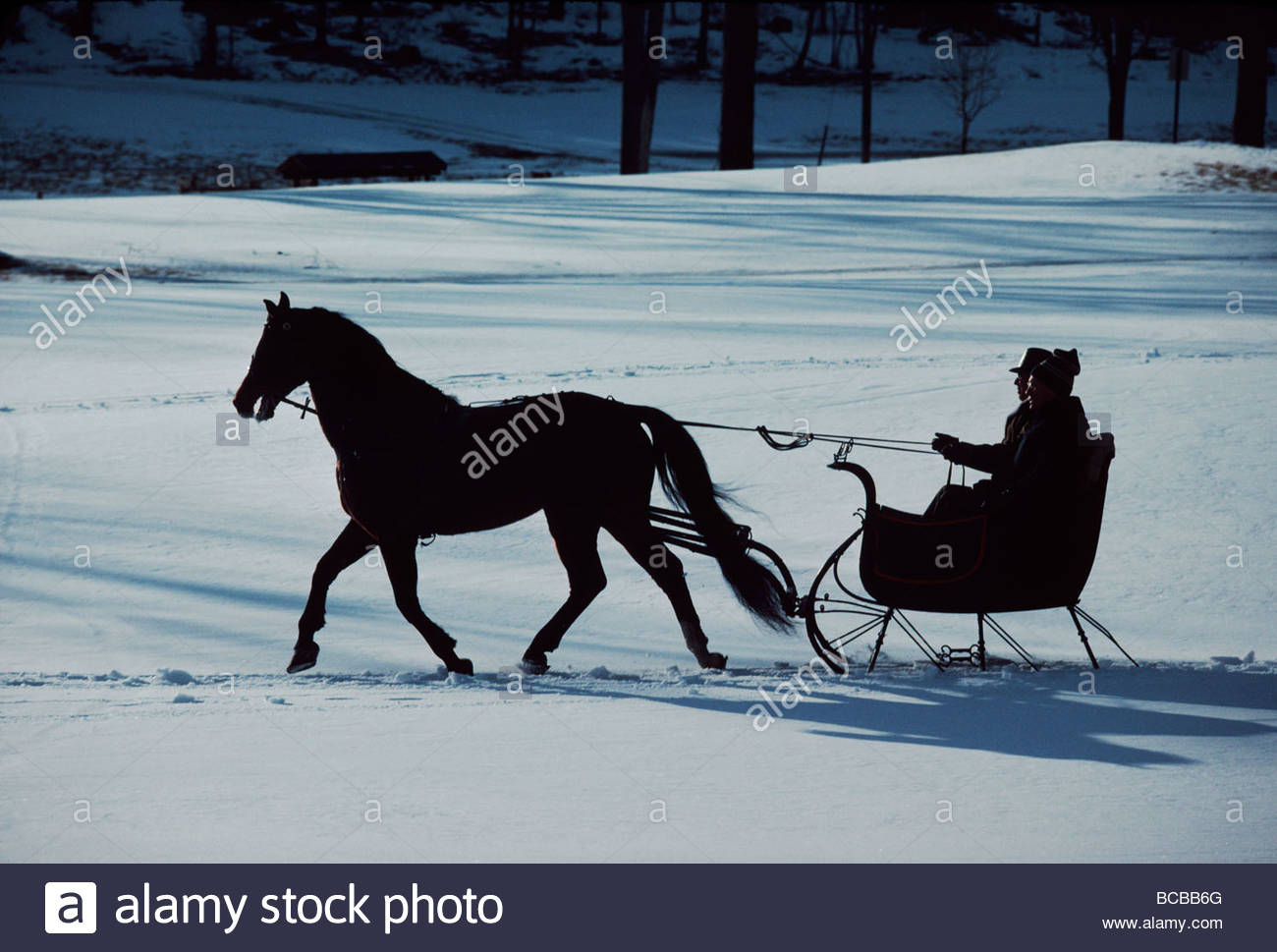A horse-drawn sleigh ride at twilight in a snowy landscape. Stock Photo