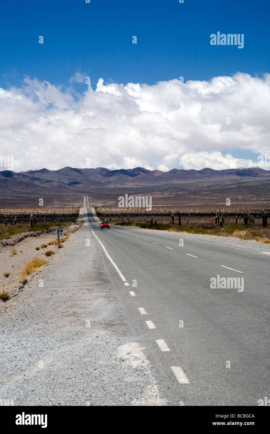 Route 40 running through the Parque Nacional Los Cardones, Salta Province, Argentina - Stock Image