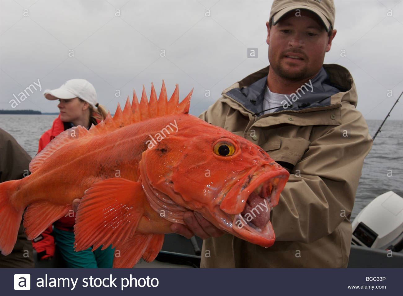 A man holds a yellow eye fish he caught off of Prince of Wales Stock ...