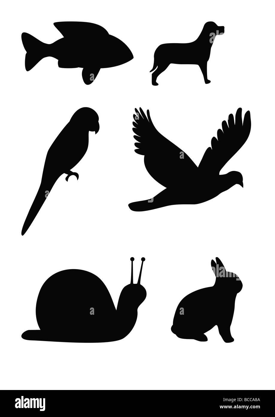 Set of animal silhouettes fish flying bird parrot snail dog and rabbit - Stock Image