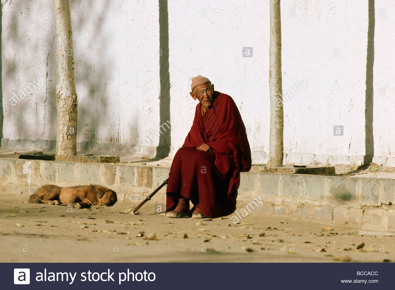 Tibetan Buddhist monk and dog on sidewalk. - Stock Image