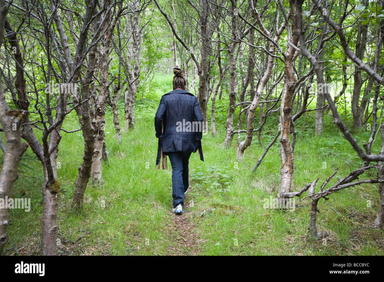 Woman walking in Birchwood (Betula) forest Iceland - Stock Image