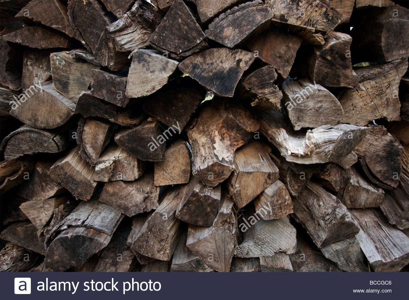 Stacked firewood. - Stock Image