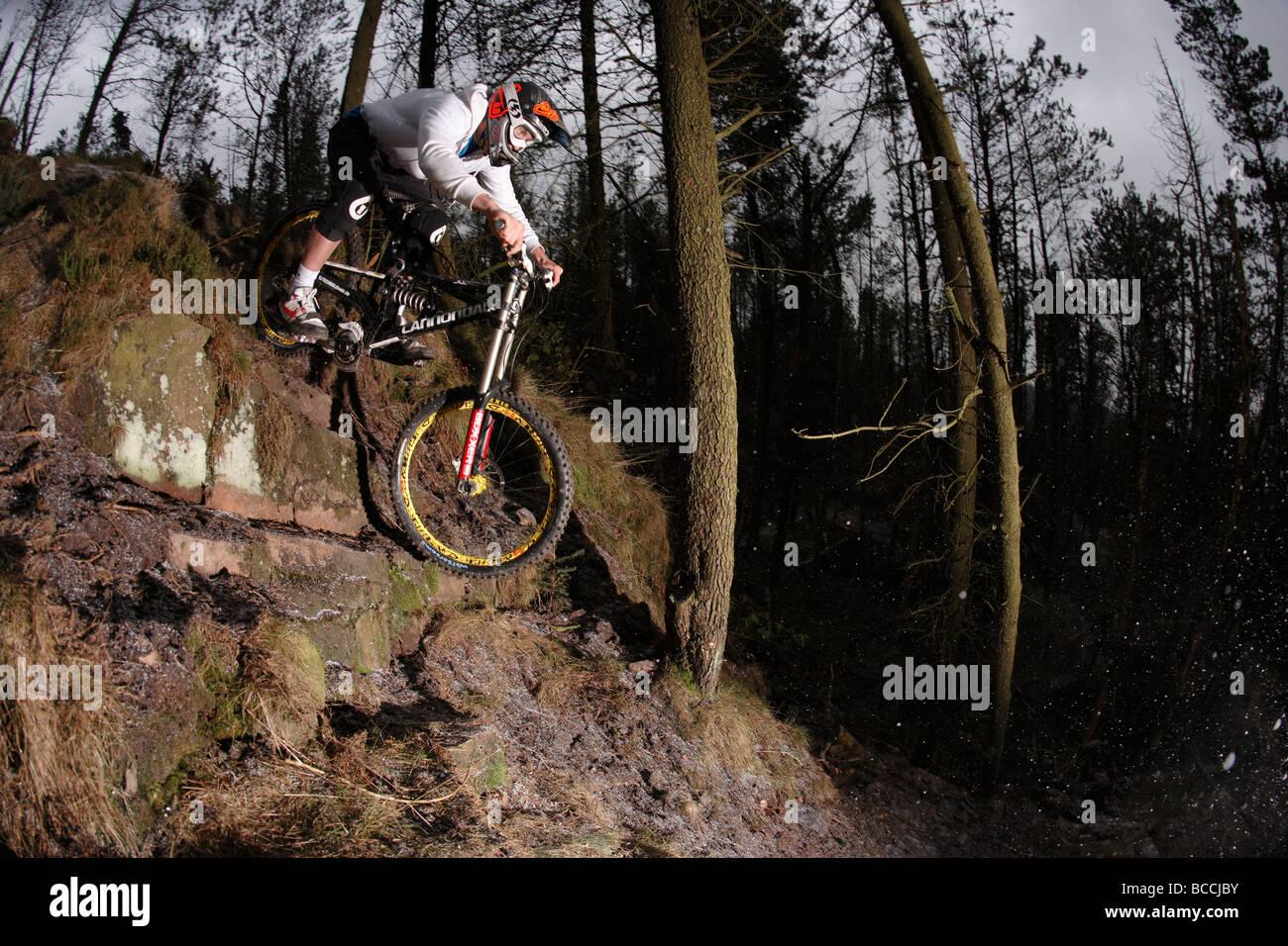 Mountain biker rides down steep forest terrain - Stock Image