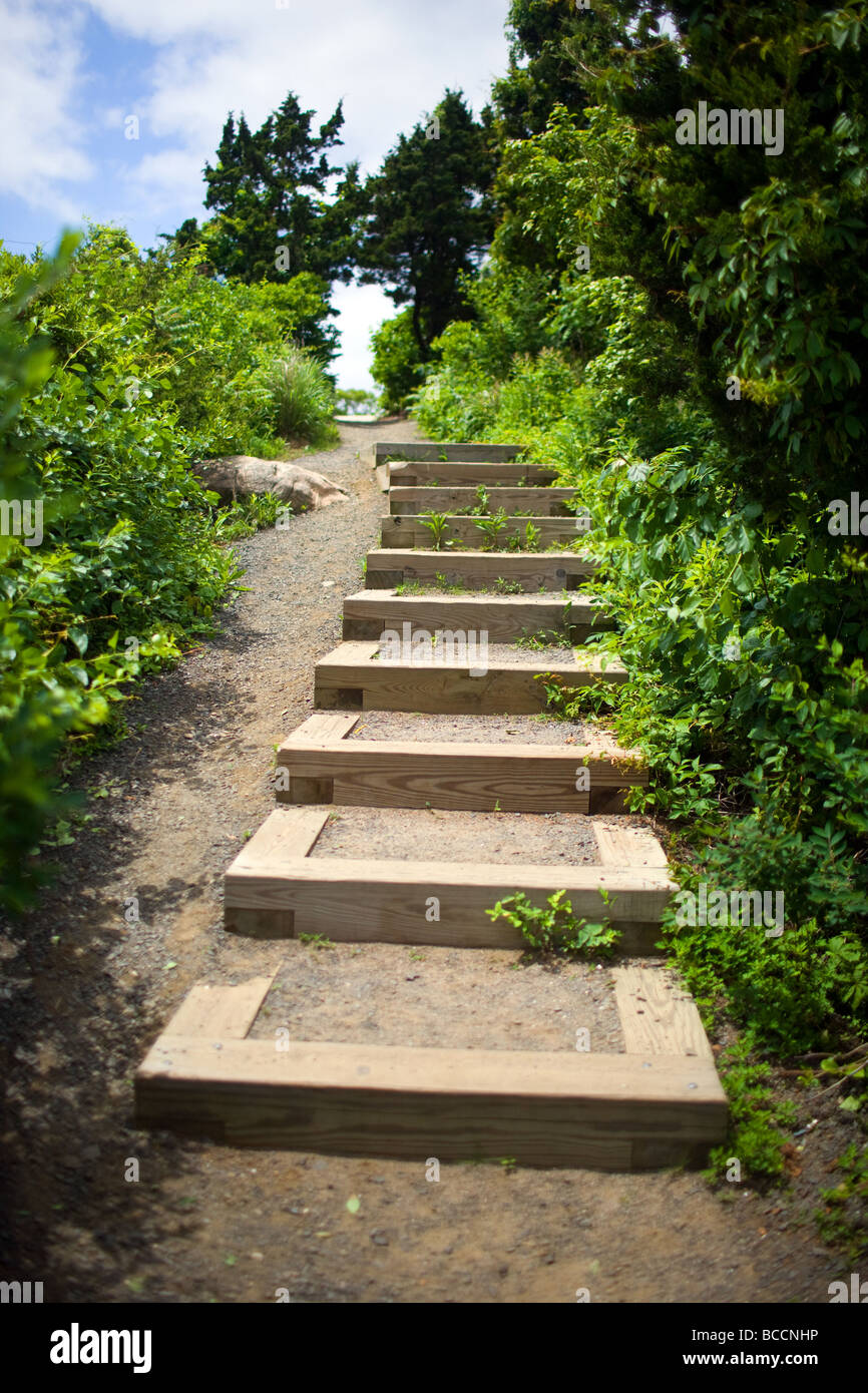 Steps going up towards sky - Stock Image