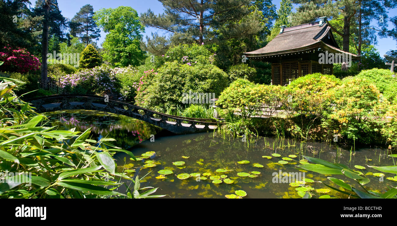 The Japanese Garden at Tatton Park, Near Knutsford, Cheshire, England, UK - Stock Image