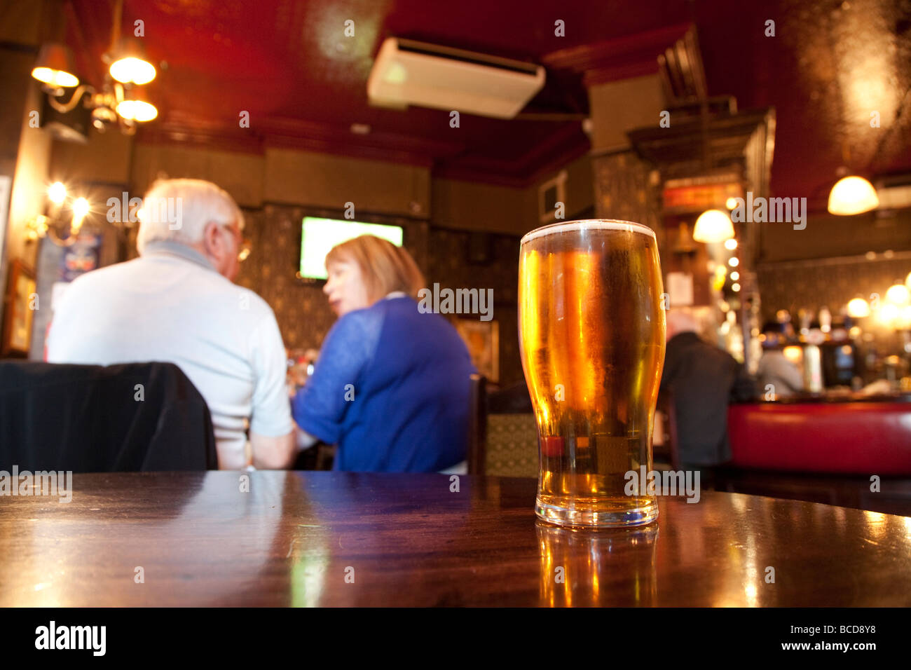 Pint of lager in pub - Stock Image