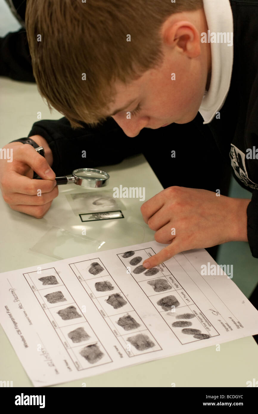 English students during chemistry lesson learning about fingerprints - Stock Image