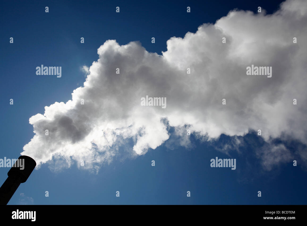 Steam vents from Bjarnarflag geothermal power station, Mývatn, Iceland - Stock Image