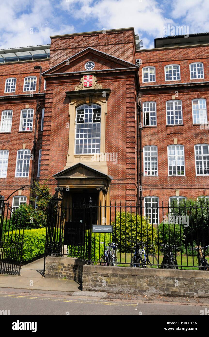 Cambridge University Department of Pathology Building in Tennis Court Road, Cambridge England UK - Stock Image