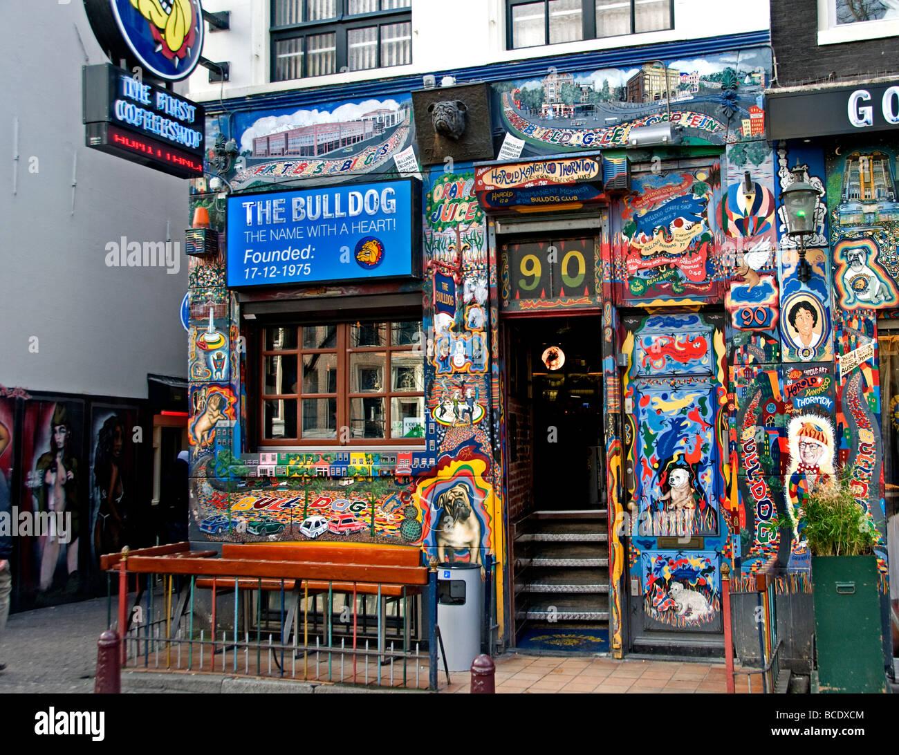 Amsterdam Cafe Coffee