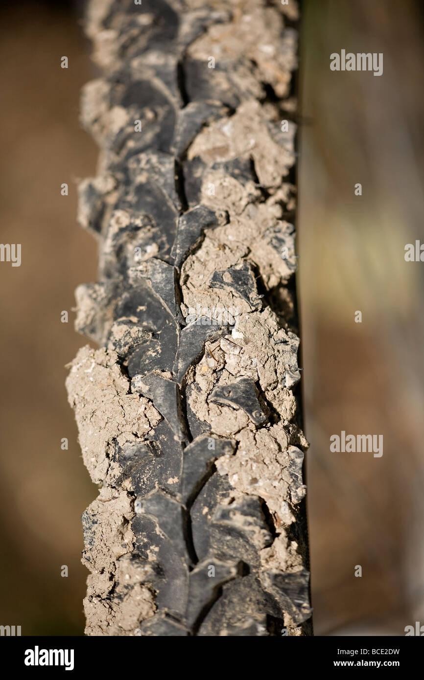 Muddy Bike Stock Photos Amp Muddy Bike Stock Images Alamy