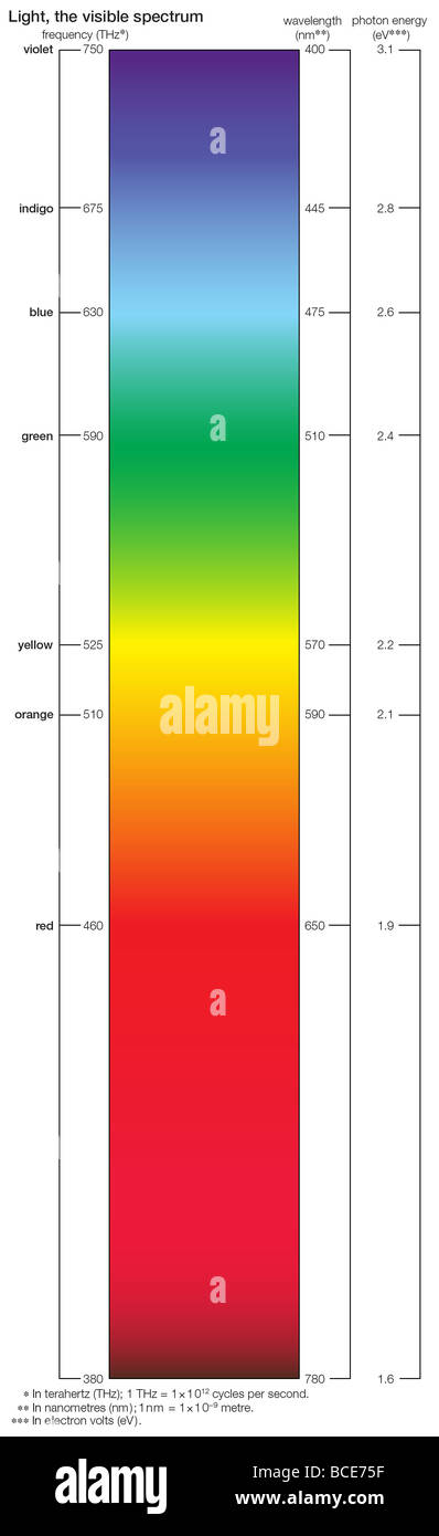 The colours of the visible spectrum vary according to their wavelengths. - Stock Image