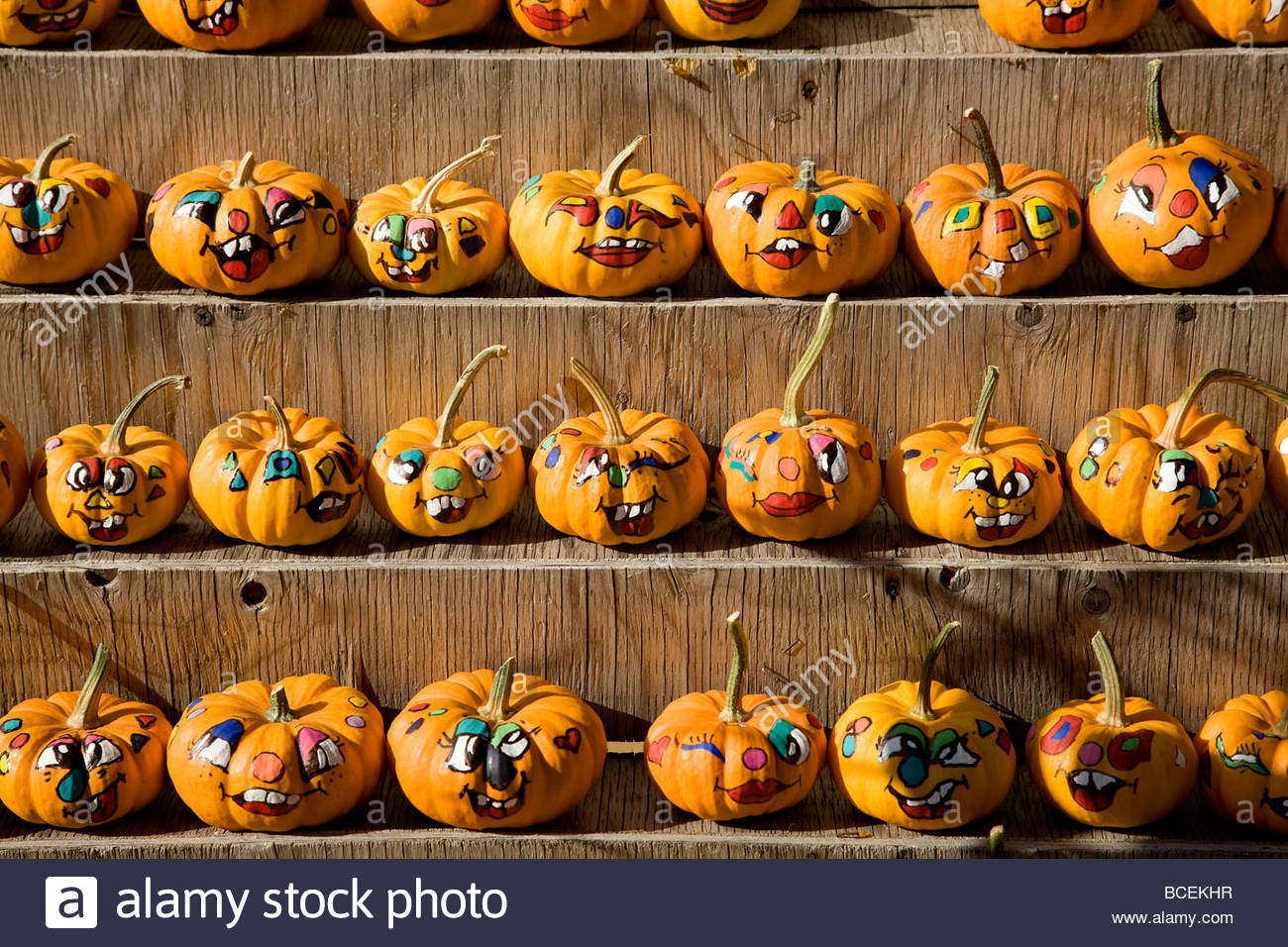Rows of small pumpkins with painted faces are for sale at a market. - Stock Image