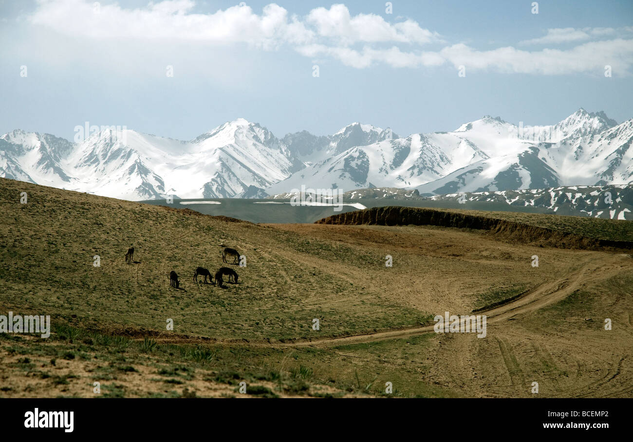 Highlands near the Band-e Amir lakes in Afghanistan's Bamiyan province are overlooked by snow-covered Hindu - Stock Image