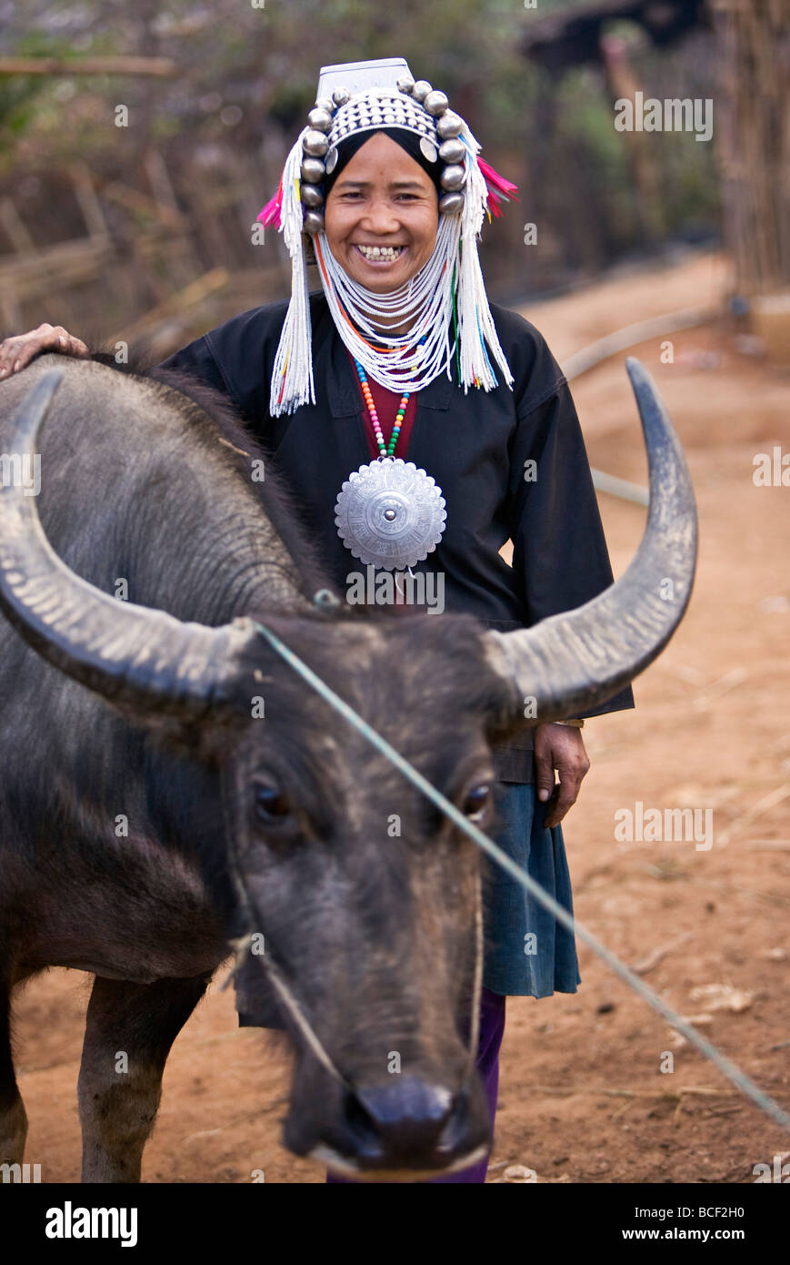 Myanmar, Burma, Namu-op. A happy Akha woman stands beside her favourite water buffalo wearing traditional costume. - Stock Image