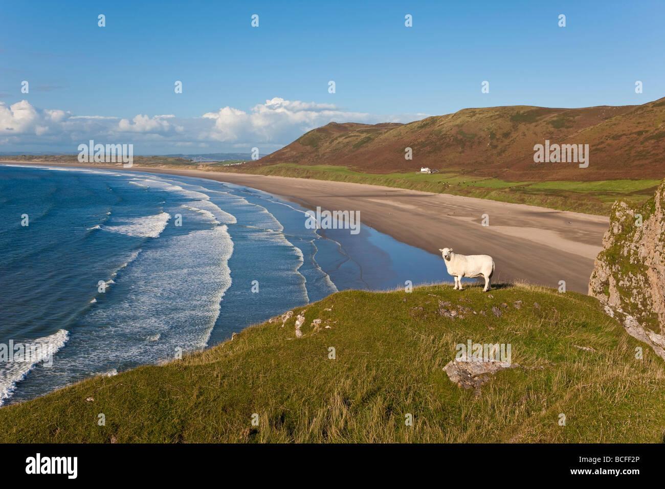 UK, Wales, Glamorgan, Gower Peninsula, Rhossilli Bay - Stock Image
