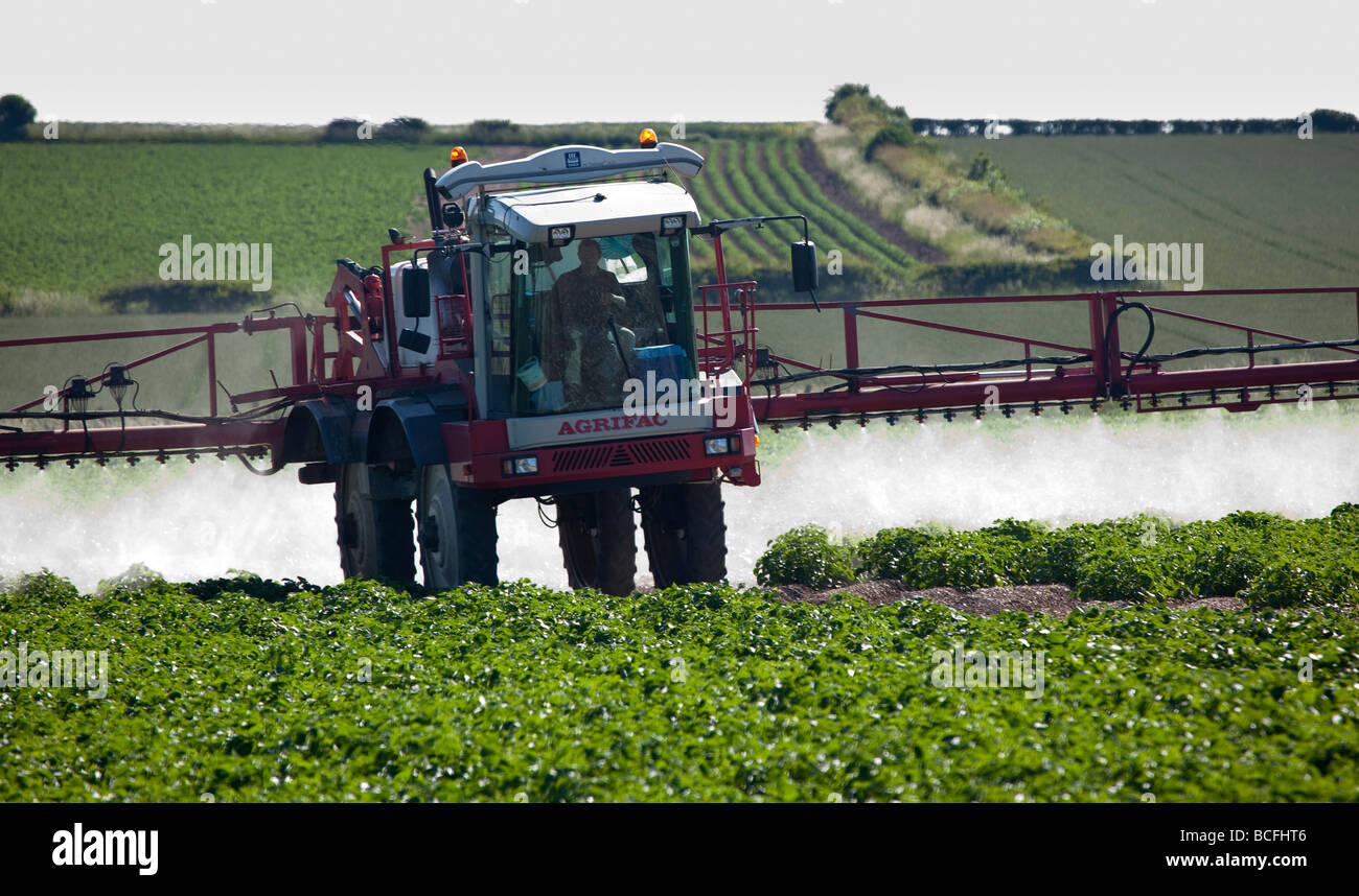 Spraying Potato crop on the Yorkshire Wolds - Stock Image