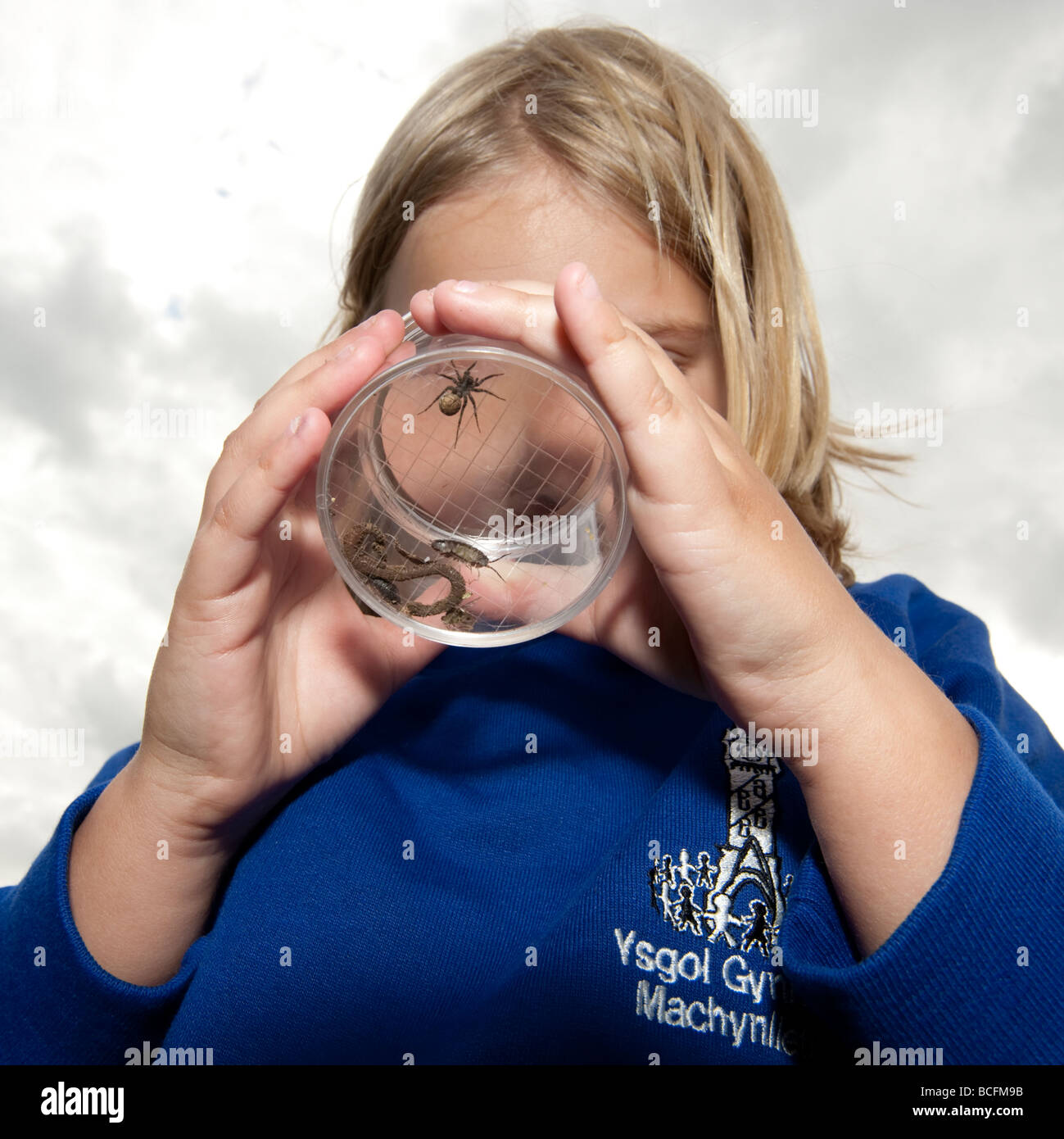 Primary school girl looking at spiders worms and woodlice that she has collected on a nature trail UK - Stock Image