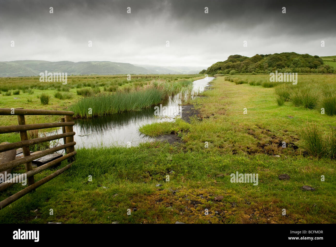Cors Fochno managed wetlands at the Ynyshir RSPB nature reserve in the Dyfi estuary biosphere Ceredigion Wales UK - Stock Image