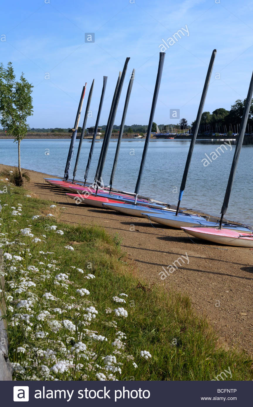 Beached windsurfing boards at Ardingly Reservoir, West Sussex, England, UK - Stock Image