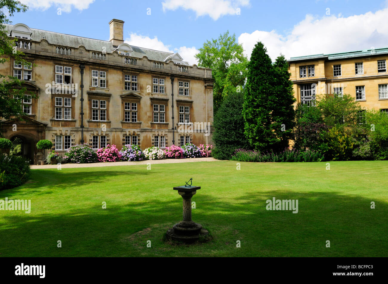 The Fellows Garden at Christs College, Cambridge, England, UK - Stock Image