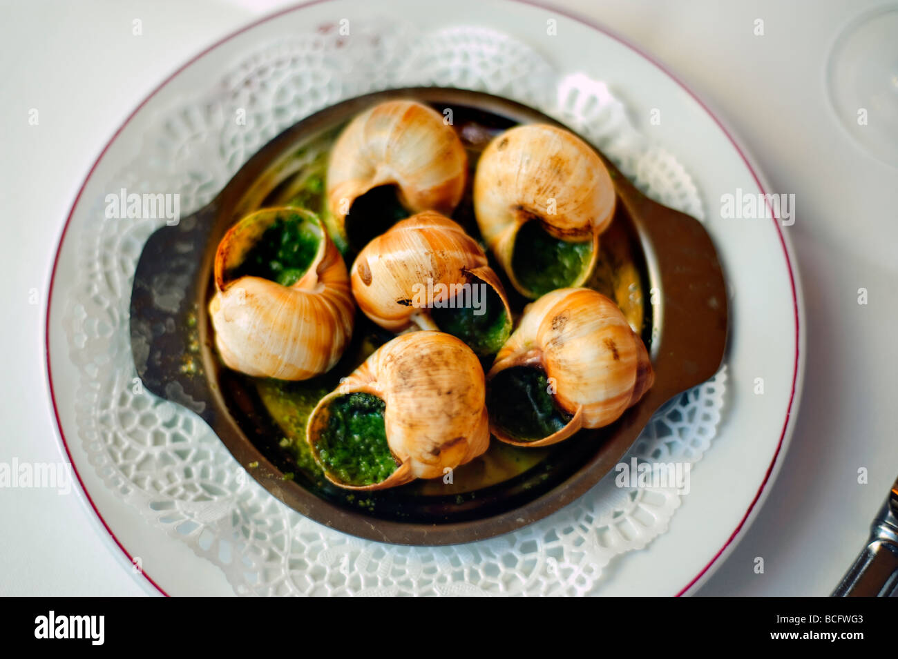 Paris France, French Brasserie Restaurant 'Le Grand Colbert', Detail French Food on a Plate 6 Snails - Stock Image