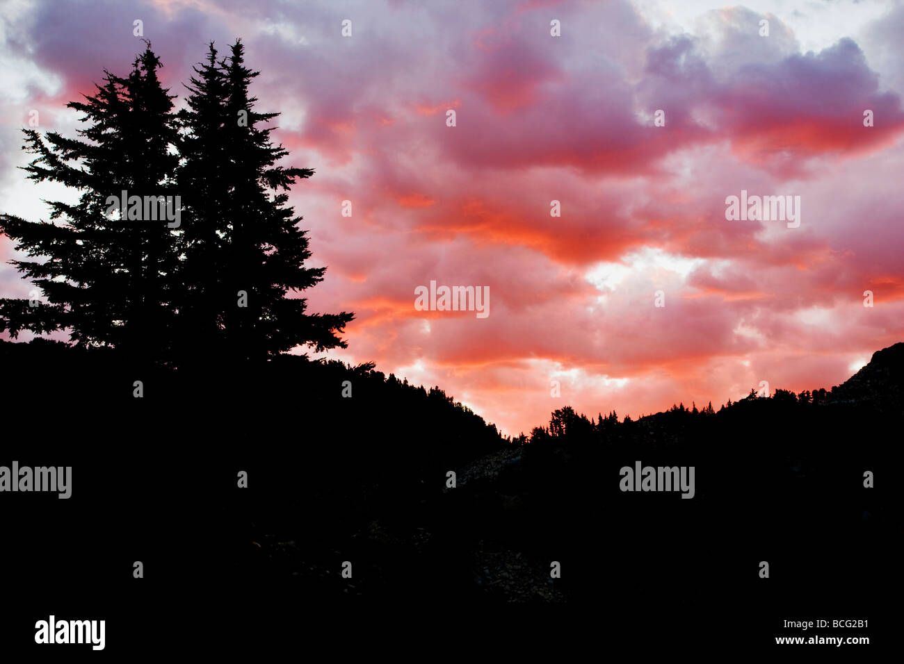 Sunrise over tree is Lassen Volcanic National Park California - Stock Image