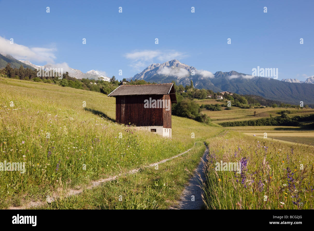 Track and barn in summer Alpine flower meadows in green valley in early morning. Imst Tyrol Austria Europe. - Stock Image
