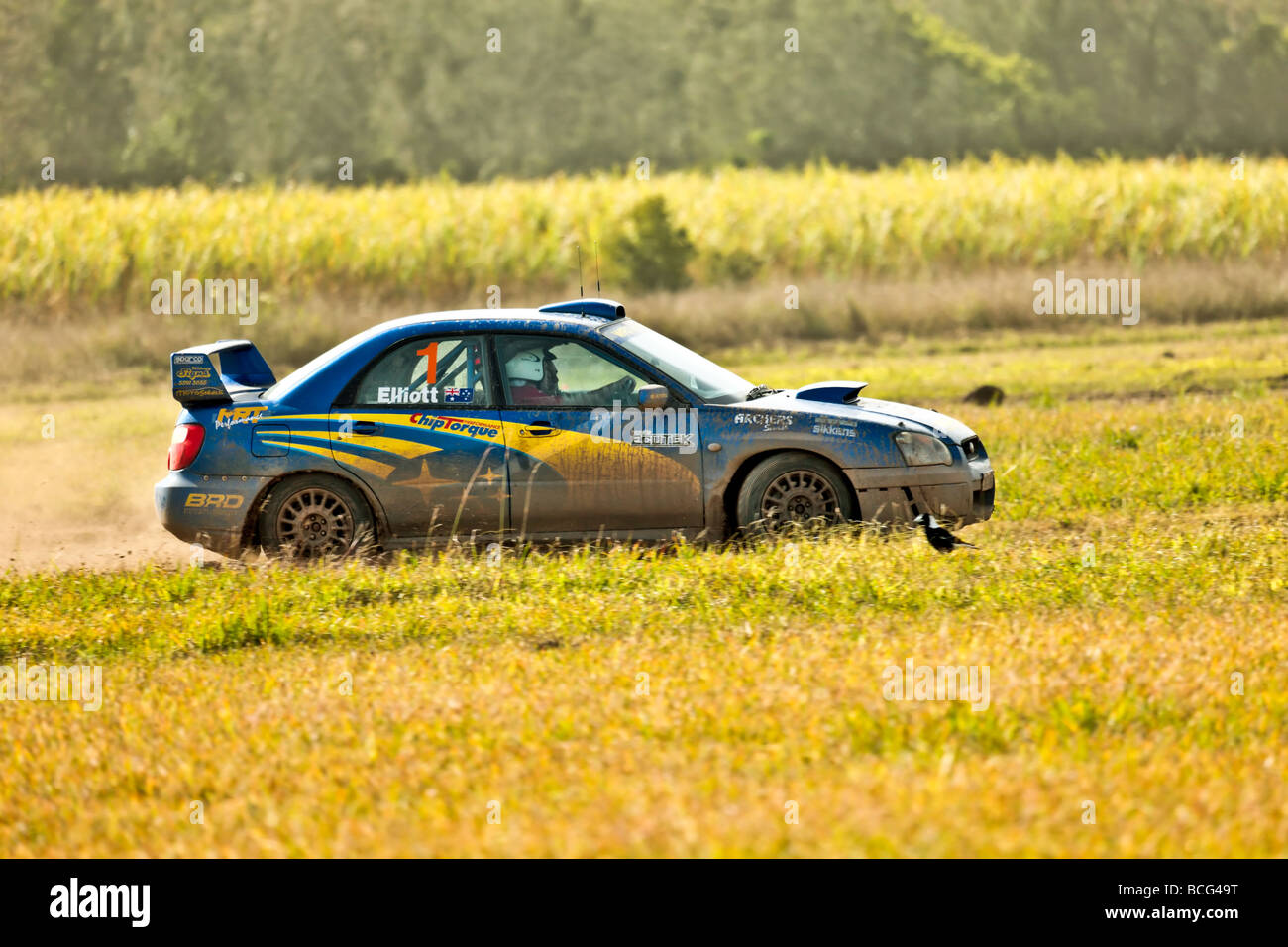 Subaru WRX rally car doing circuits on a dirt track Stock