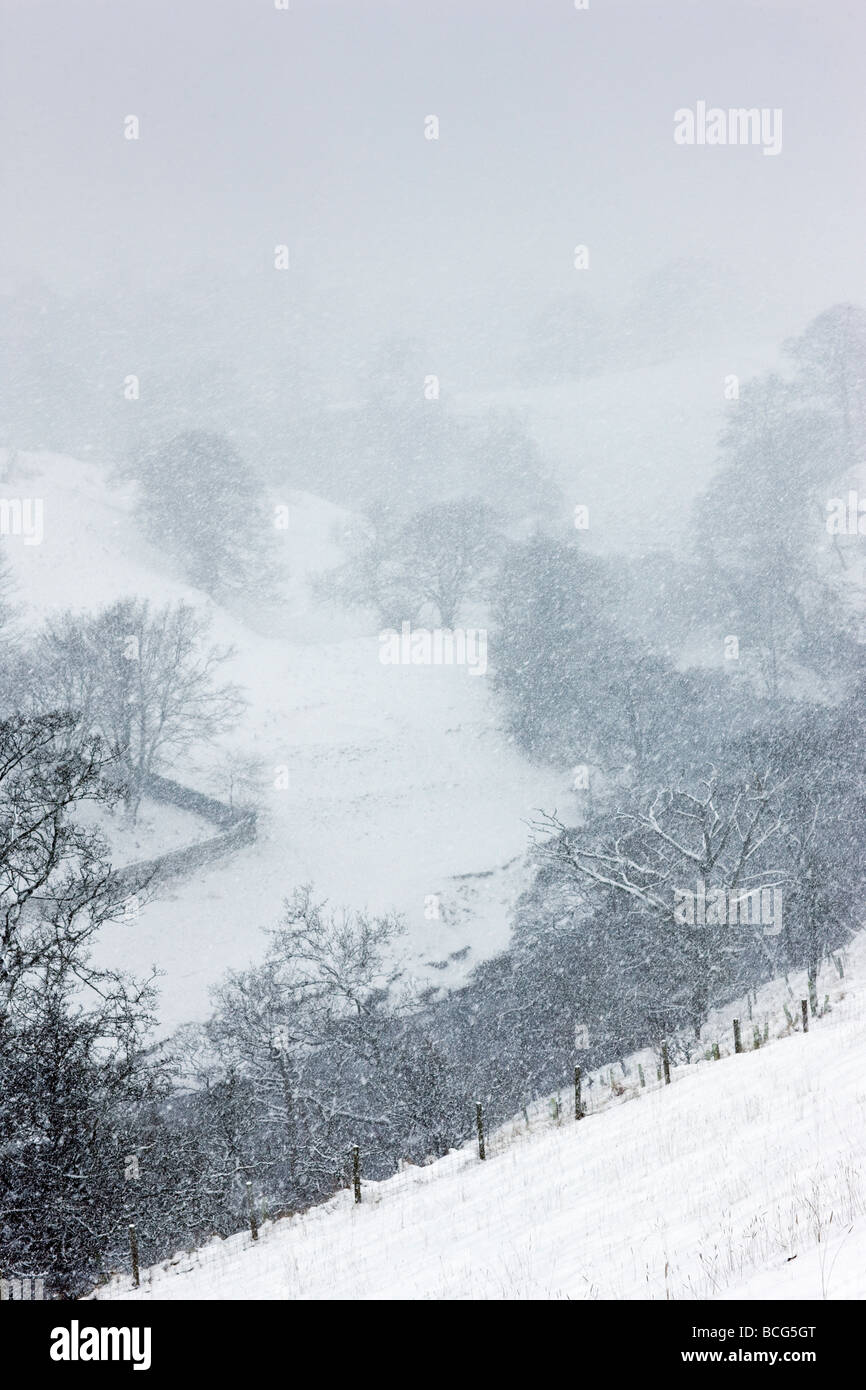 Falling snow  on a cold winter's day UK - Stock Image
