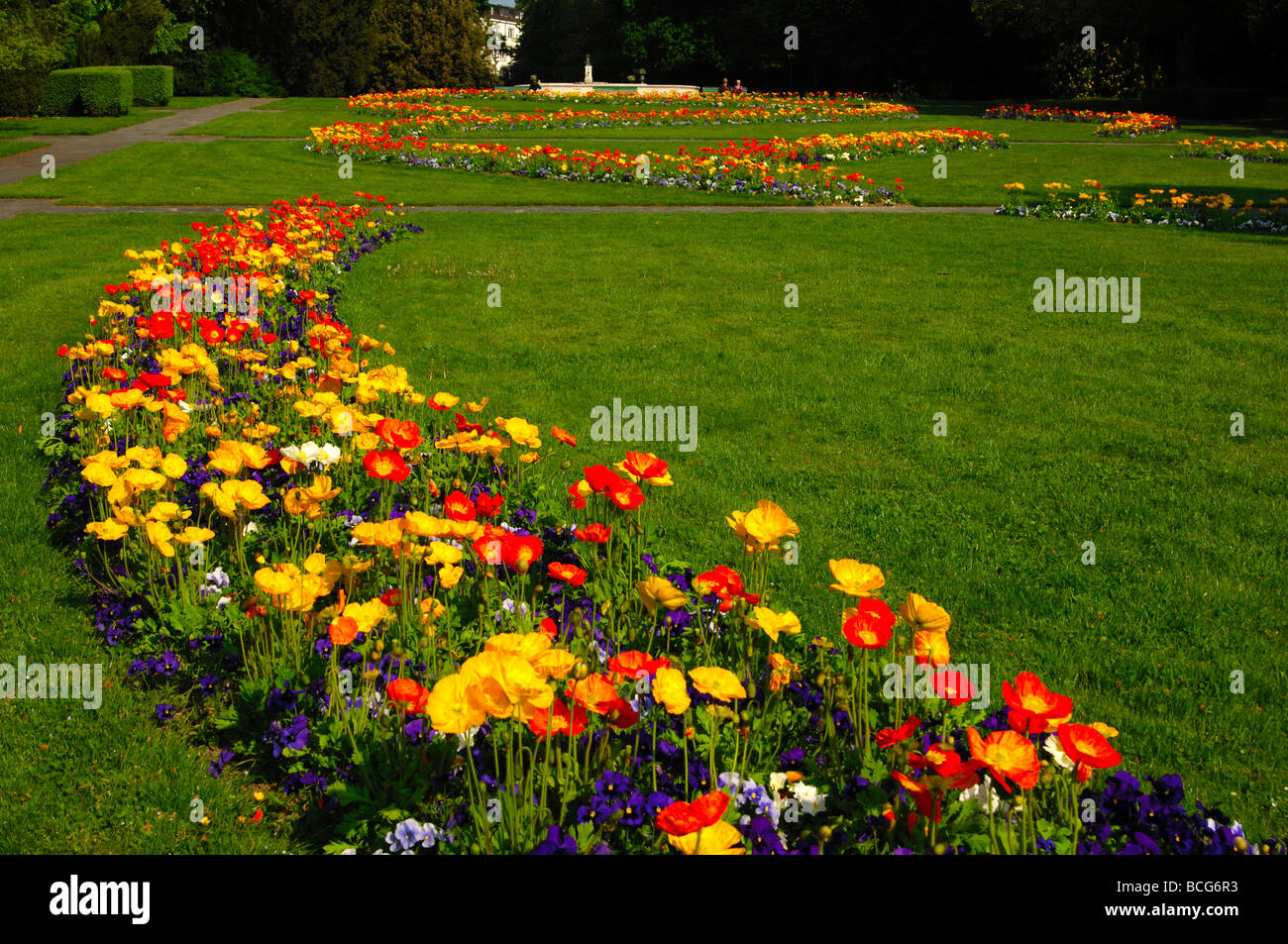 Flower bed in the public parc Mon Repos, Geneva, Switzerland - Stock Image