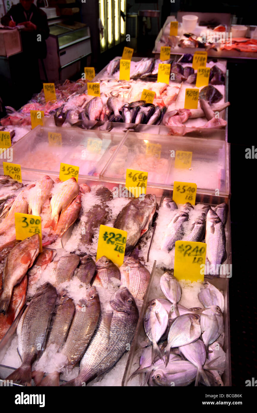 Fish shop in China Town, New York Stock Photo