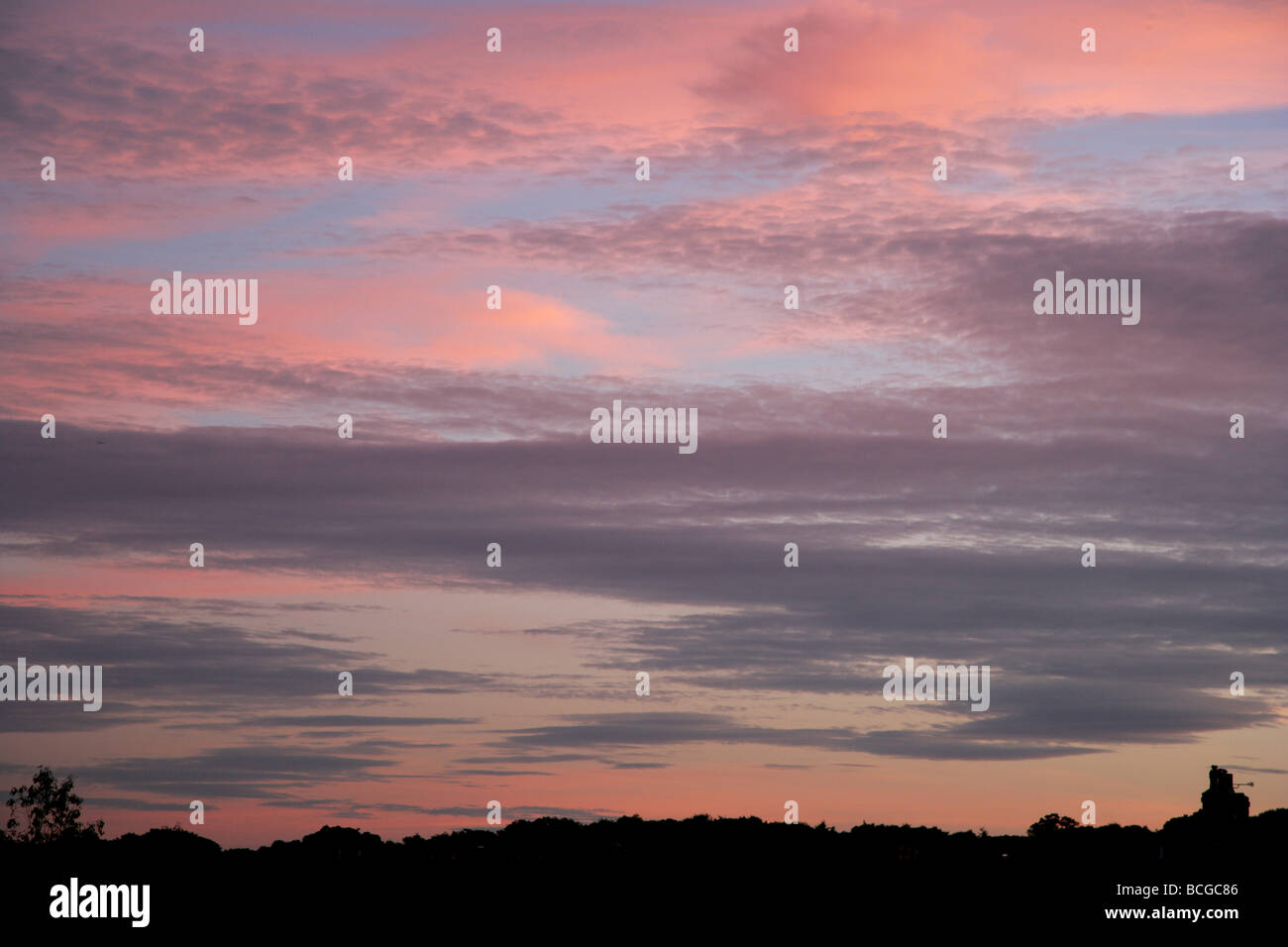 Colourful sunset cirrus clouds in pink and grey - Stock Image
