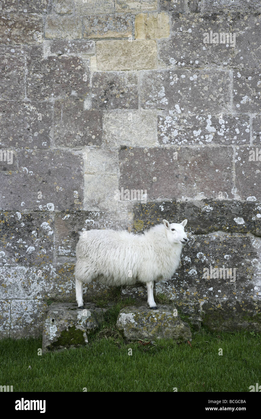 Stone Block Stock Photos & Stone Block Stock Images - Alamy