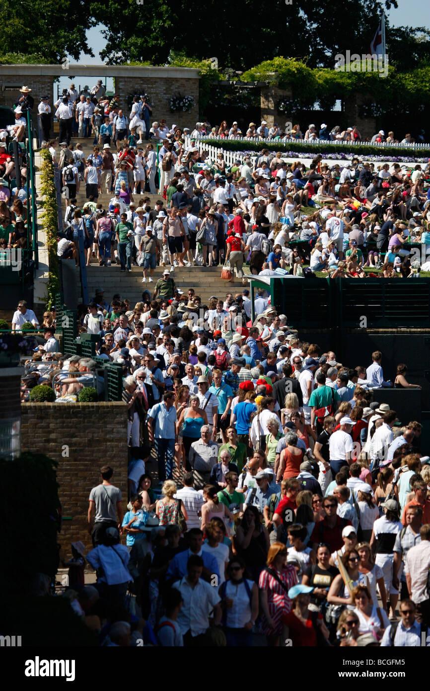 Crowds at the Wimbledon Championships 2009 - Stock Image