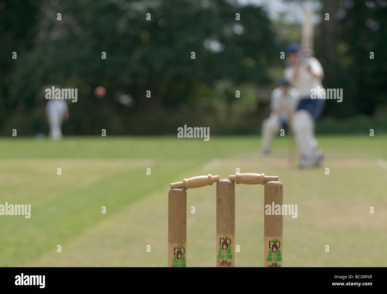 wickets stumps and bail at Cricket game - Stock Image