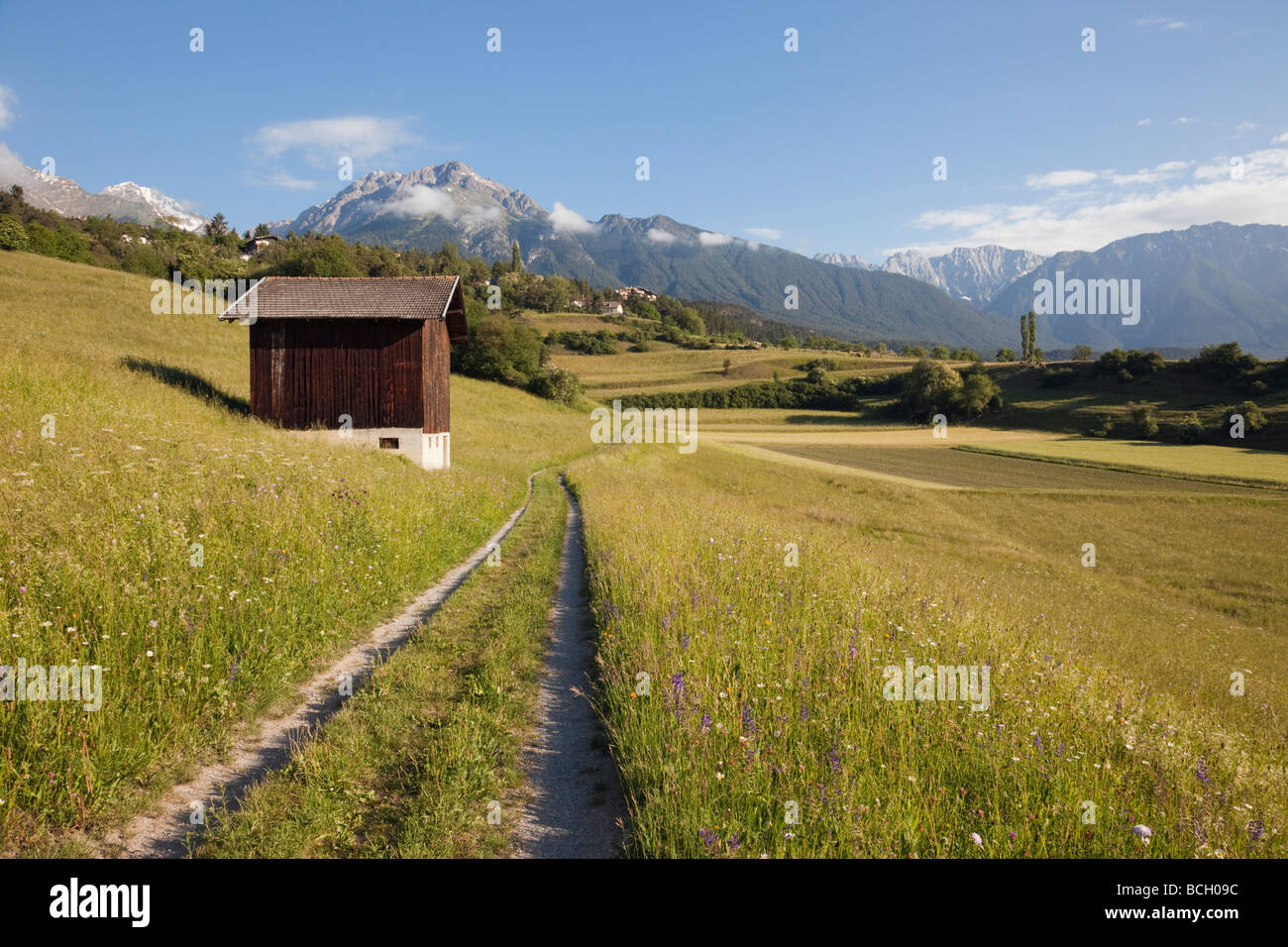 Imst Tyrol Austria Europe. Track and barn in summer Alpine flower meadows in green valley in early morning - Stock Image