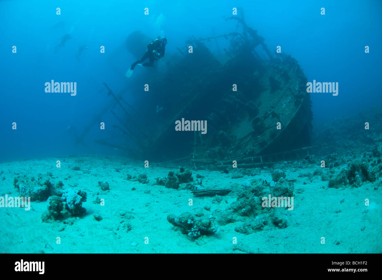 View of the stern superstucture of the Giannis D. a popular scuba diving shipwreck in the Red Sea near Egypt. - Stock Image