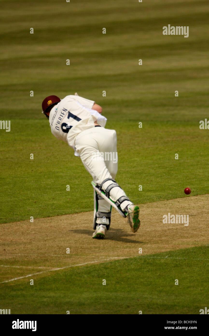 Irishman Niall O'Brien batting for Northants v Glamorgan in the County Championship at St. Helen's, Swansea. - Stock Image