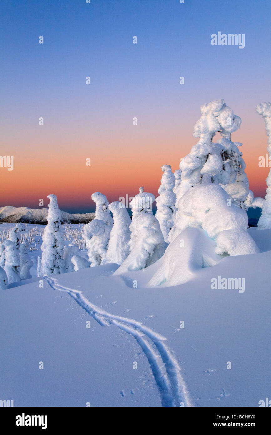 Scenic sunrise in winter with ski tracks in the foreground Wrangell Island Southeast Alaska - Stock Image