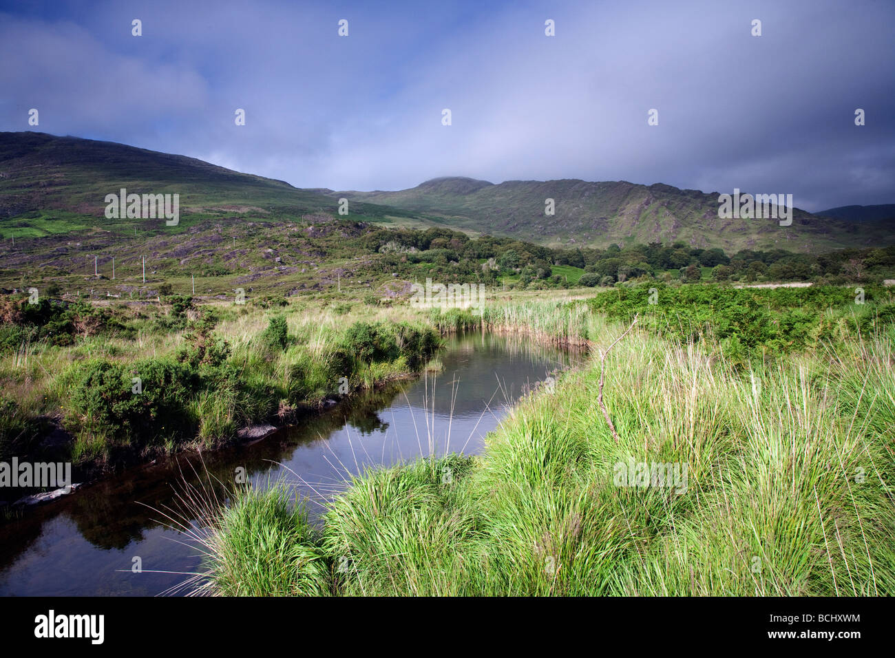 Cloonee Loughs near Kenmare County Kerry South West Ireland - Stock Image