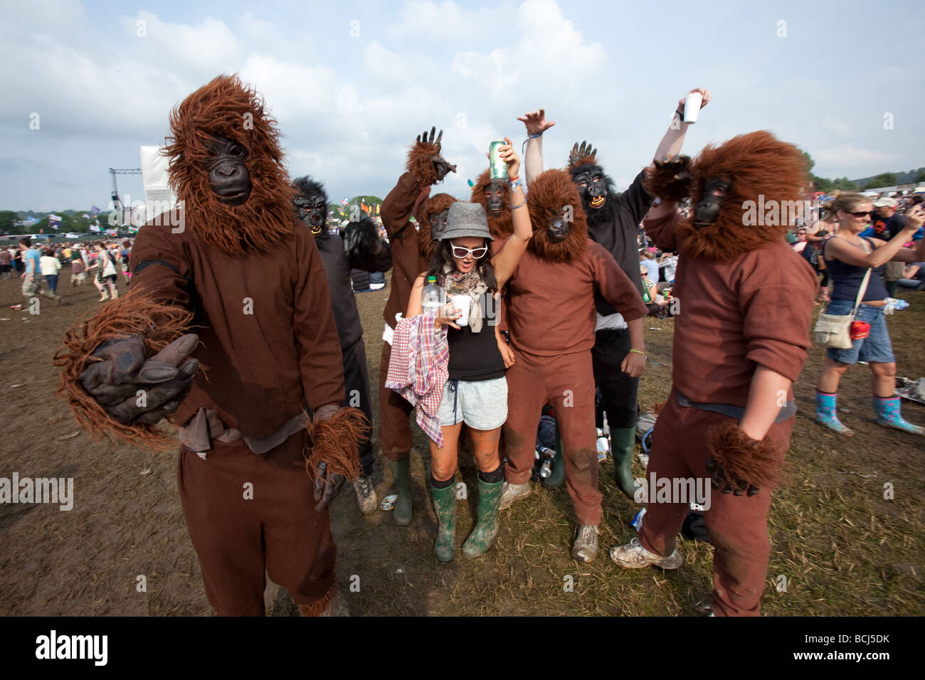 Fancy dress gorillas at Glastonbury Festival 2009 Somerset England - Stock Image