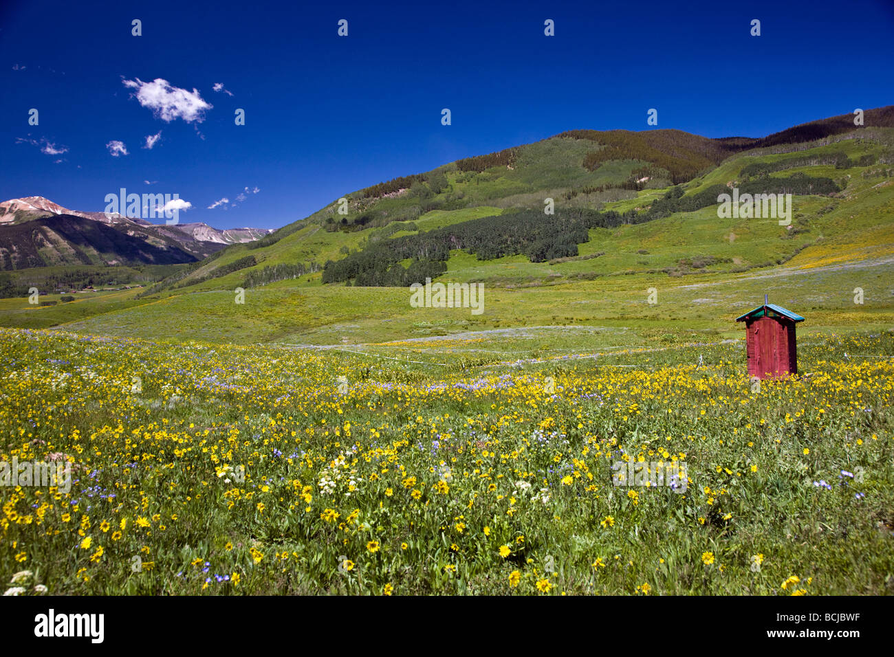 Red outhouse near the horse stables at Mount Crested Butte Colorado USA - Stock Image