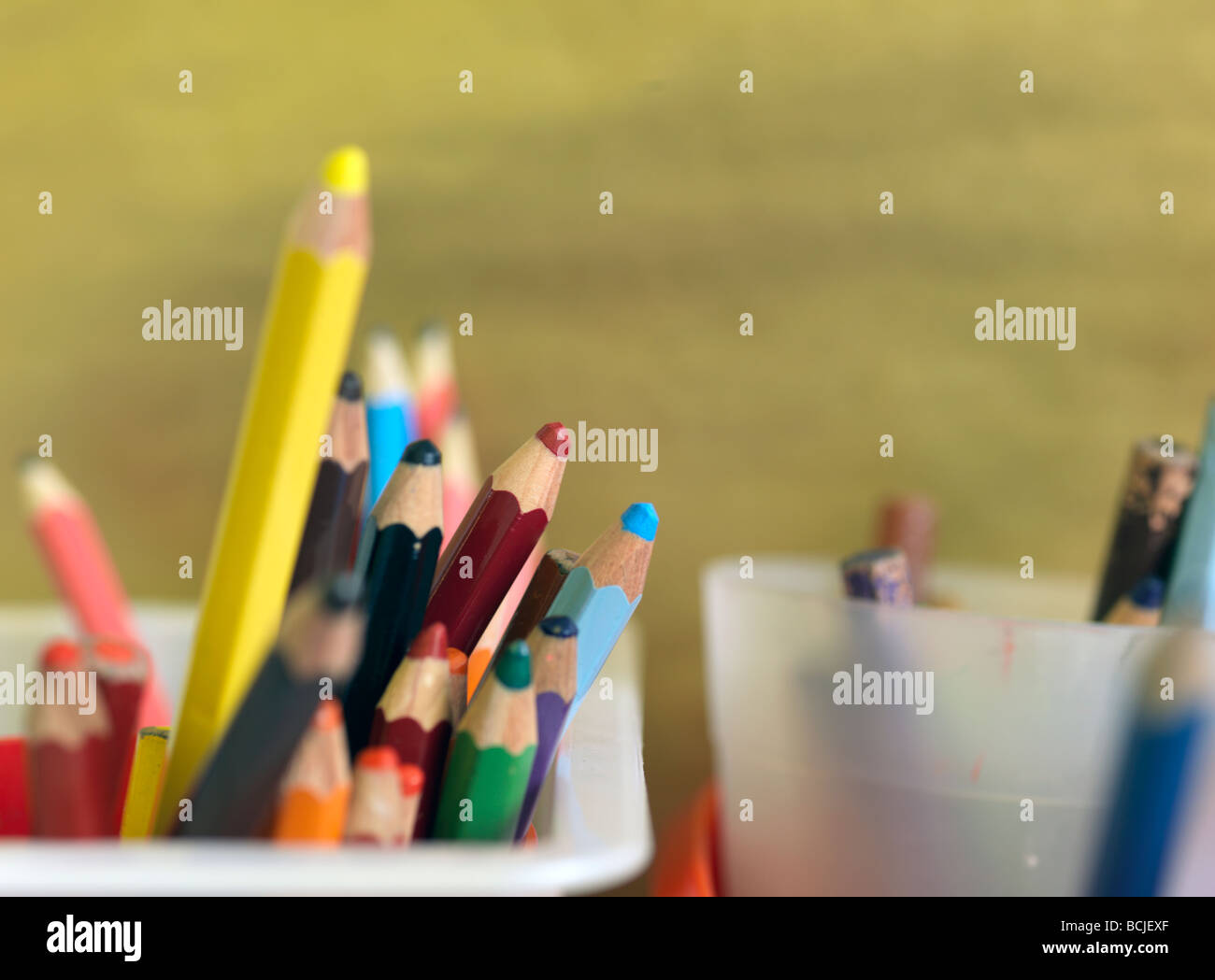 colored pencils in school pots - Stock Image