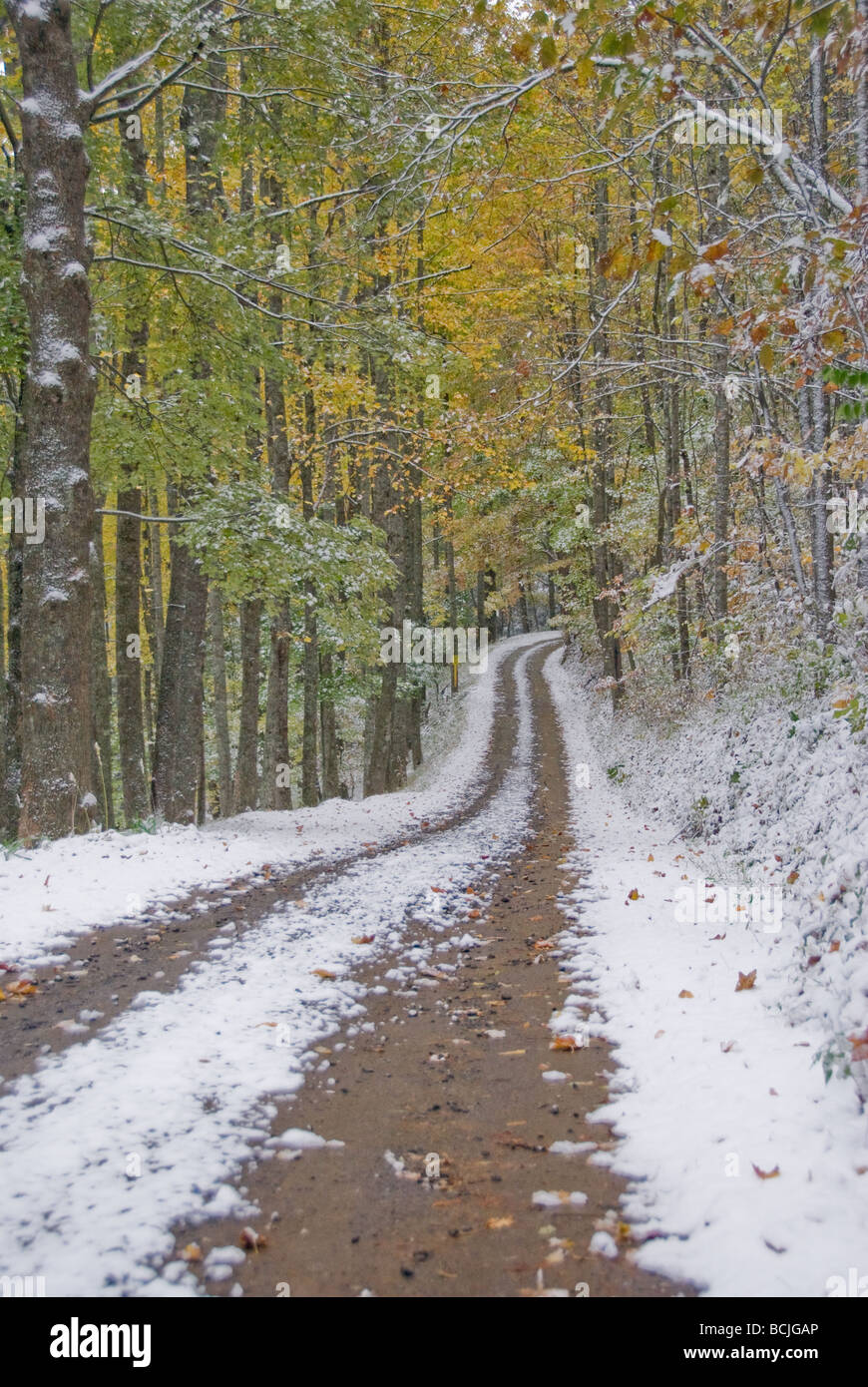 Snow Covered Mountain Road In The Fall Of The Year With