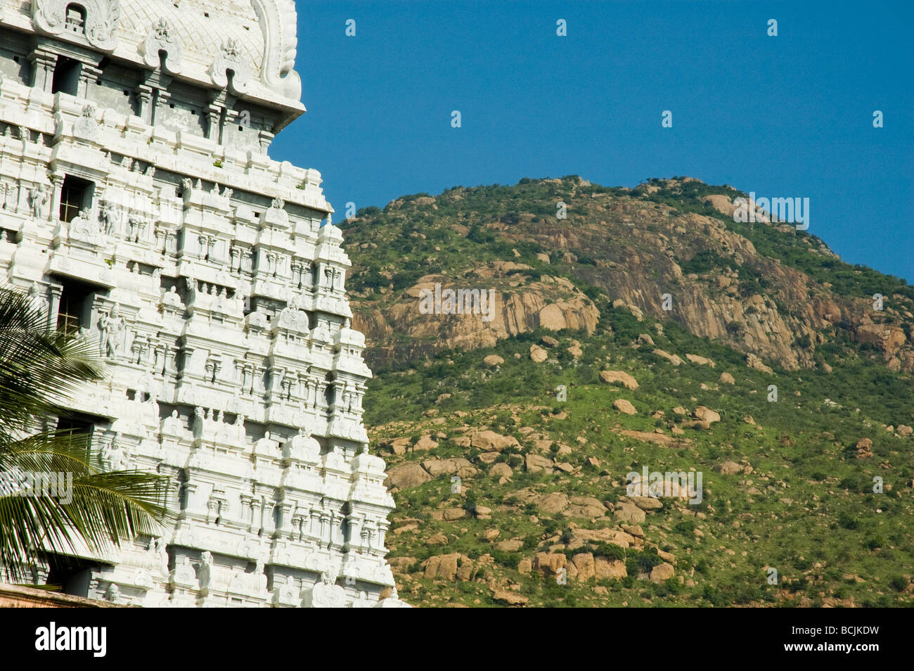 A gopura of the Arunachula temple (dedicated to Shiva) with the summit of the holy hill of Arunachula behind, Tiruvannamalai - Stock Image